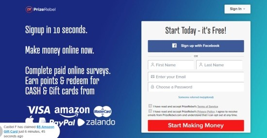 The landing page of the Prizerebel company that promises easy online earning.